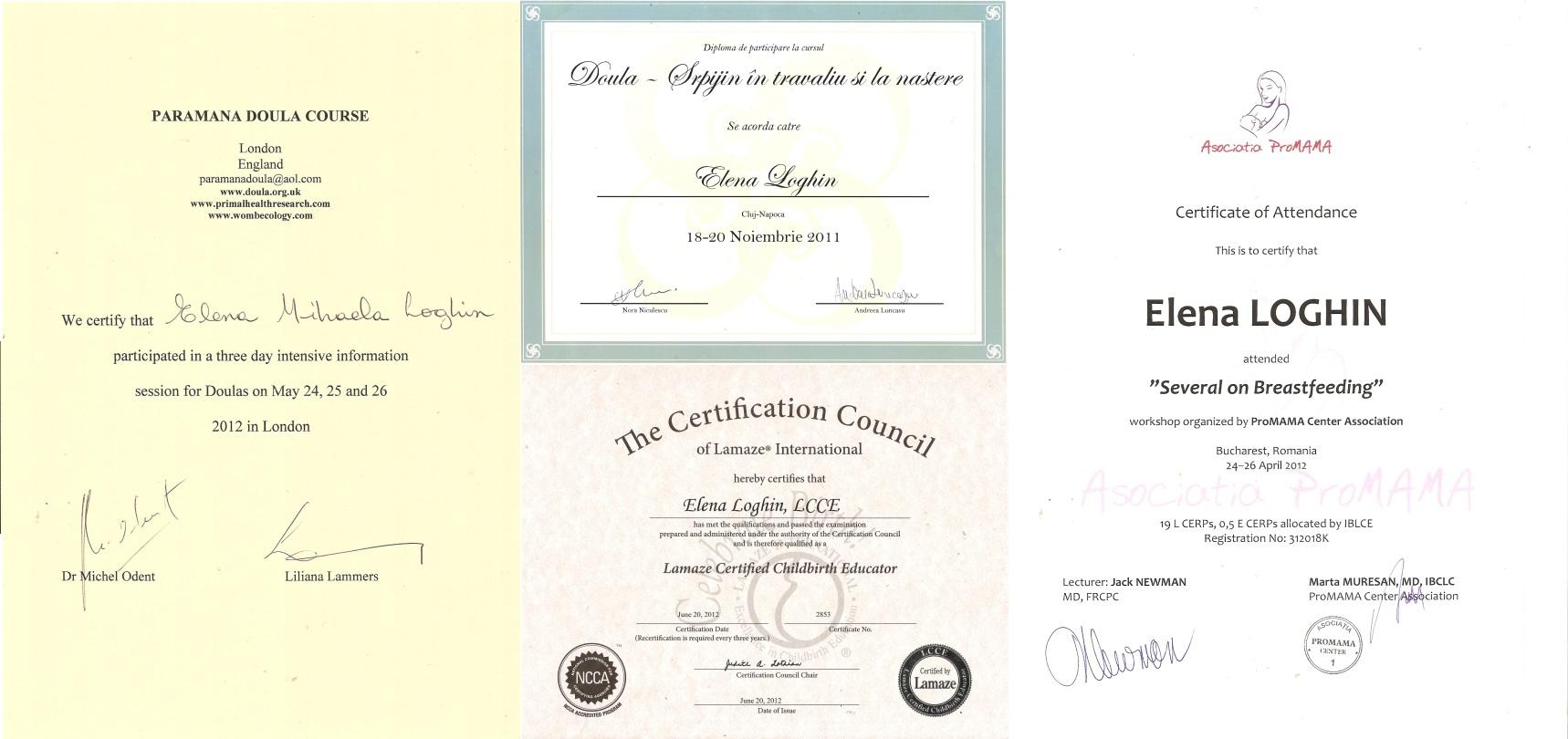 Elena Loghin diplome